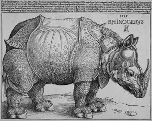 Rhinoceros, Durer 1515